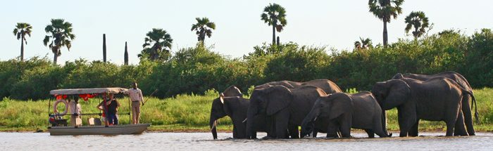 Selous Game Reserve boat safari